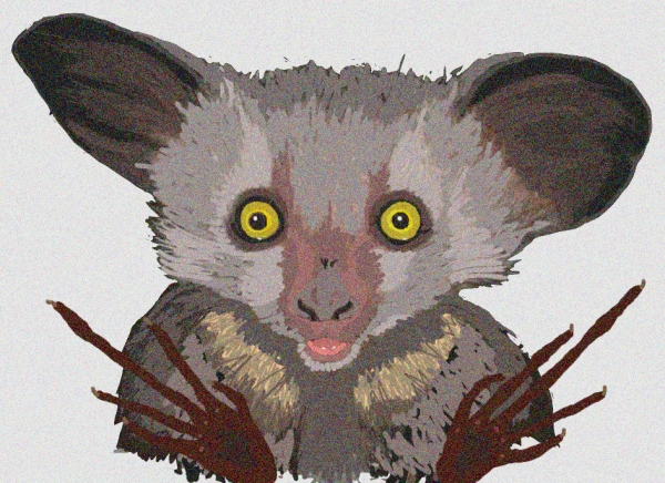 aye-aye for blog def