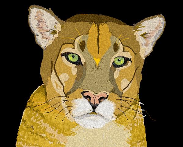 mountain lion 3 copy