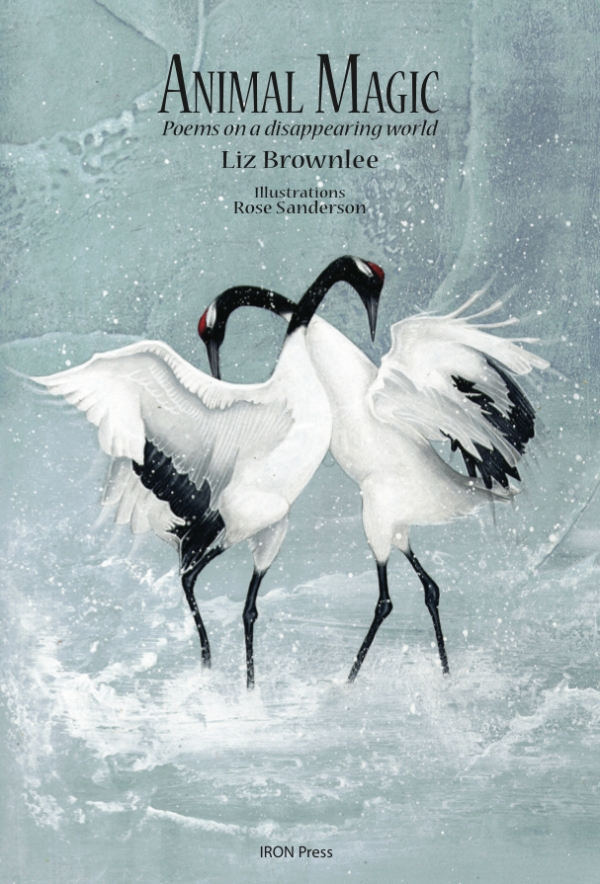 Animal Magic, by Liz Brownlee. Beautifully illustrated by Rose Sanderson, poems about endangered animals with fun facts and endangered status.